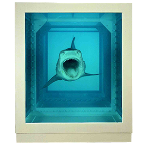 hirst shark front