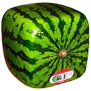 Zentsūji Watermelon | The Daily Omnivore