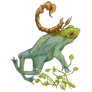 frog scorpion