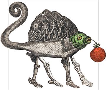 Bilderlexikon Zoologie