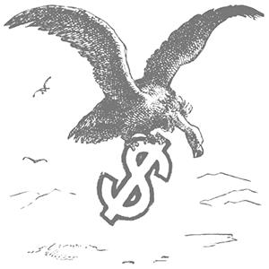 vulture cap