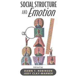 social structure and emotion