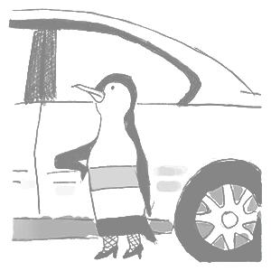 penguin prostitution edward yoon