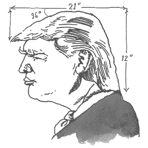 Trump by Barry Blitt