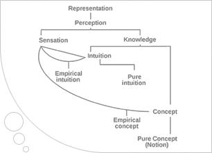 kant taxonomy