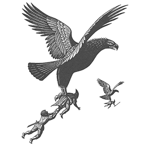 hobbit eagles