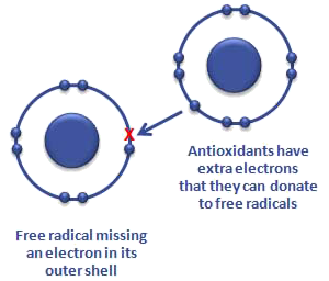 reaction formation theory