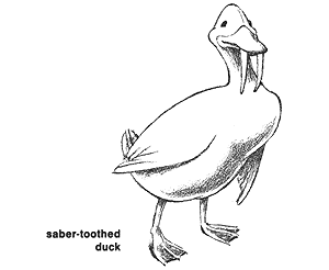 sabre-toothed duck