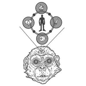stoned ape by adahn westart