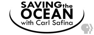 saving the ocean