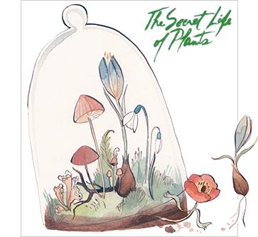the secret life of plants by kelsey garrity