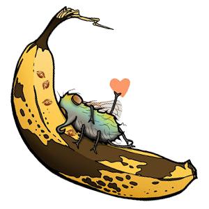 fruit fly by Emily Grandin