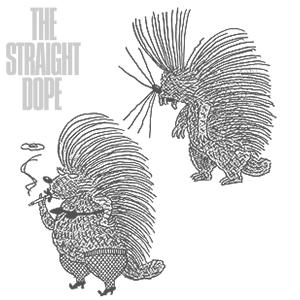 porcupines by Slug Signorino