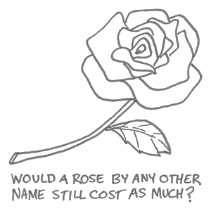 rose by any other name