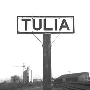 Tulia