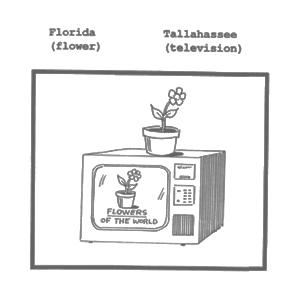 Elaborative encoding